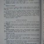Rasele de porumbei din Romania - Feliciu Bonatiu (66)