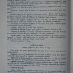 Rasele de porumbei din Romania - Feliciu Bonatiu (74)