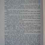 Rasele de porumbei din Romania - Feliciu Bonatiu (82)
