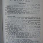 Rasele de porumbei din Romania - Feliciu Bonatiu (87)