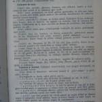 Rasele de porumbei din Romania - Feliciu Bonatiu (89)