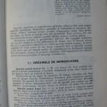 Rasele de porumbei din Romania - Feliciu Bonatiu (95)