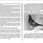 Rebusul zburatorilor - Anker Alfons (128)