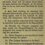 The flying Tippler & Tumbler pigeon by G. Smith0064