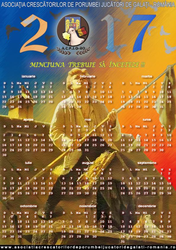 calendar-2017-v-copy